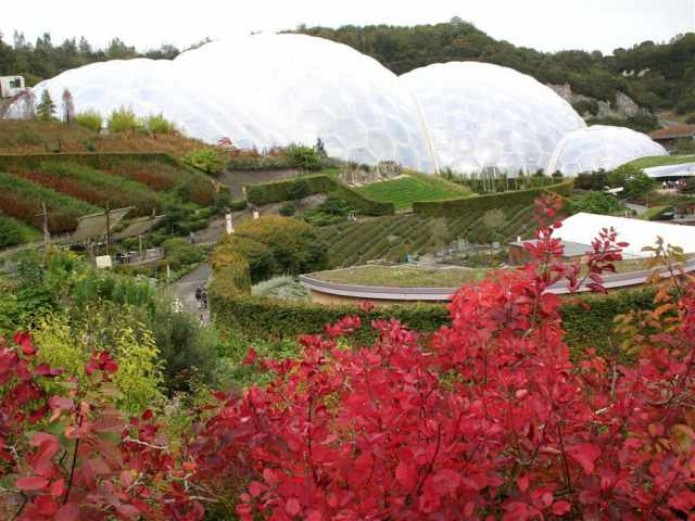 Biomes at Eden Project