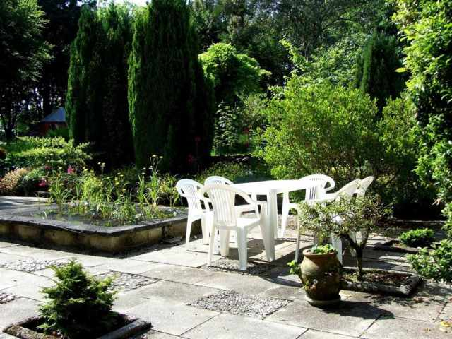 Patio and lily pond