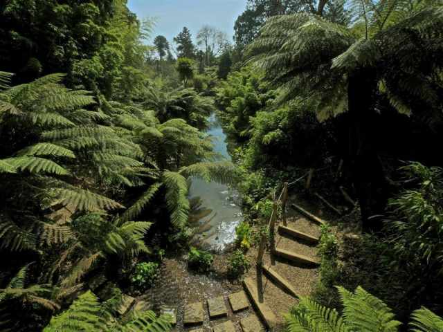 Lost Gardens of Heligan by Toby Strong